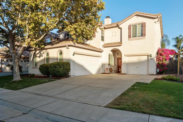 9563 Jaguar Court, Elk Grove, CA 95757 (#18070644) :: Windermere Hulsey & Associates