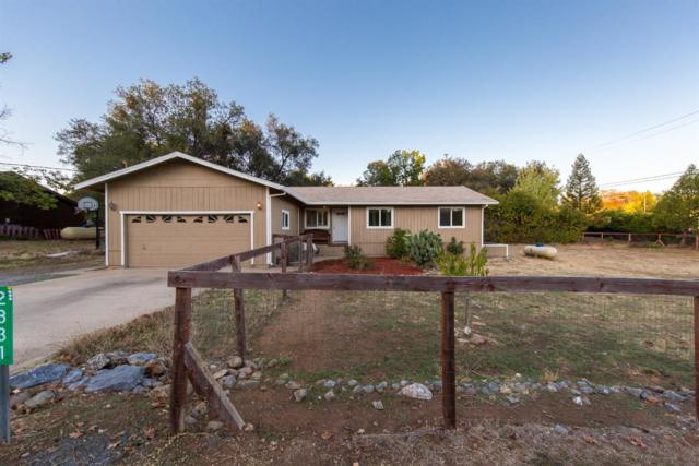 2831 Clipper Court, Cool, CA 95614 (MLS #18070694) :: NewVision Realty Group