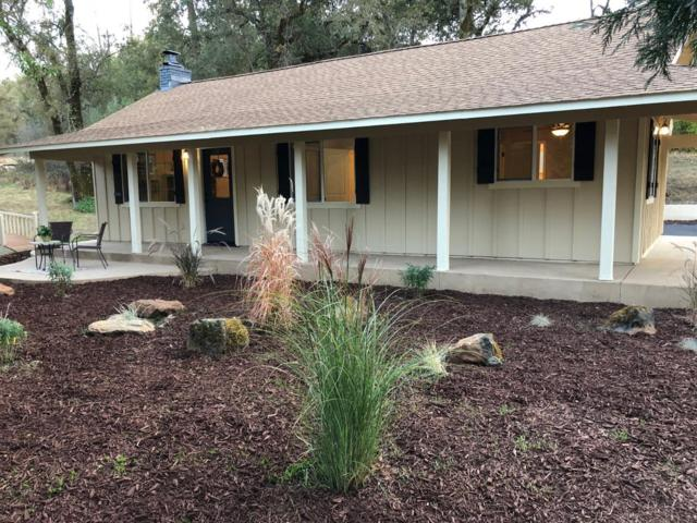 12043 Wolf Road Road, Grass Valley, CA 95949 (MLS #18070844) :: The Merlino Home Team