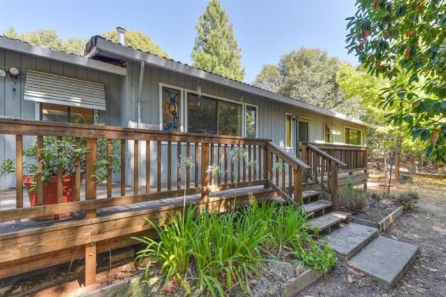 13558 Spagnoli Mine Road, Pine Grove, CA 95665 (MLS #18070875) :: Dominic Brandon and Team