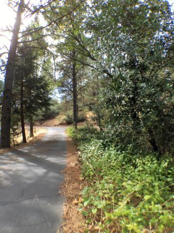14645 E Quartz Mountain Road, Sutter Creek, CA 95685 (MLS #18070893) :: Keller Williams Realty - Joanie Cowan