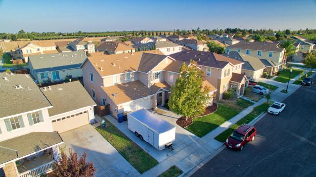 310 Summer Phlox Lane, Patterson, CA 95363 (MLS #18070953) :: The Del Real Group