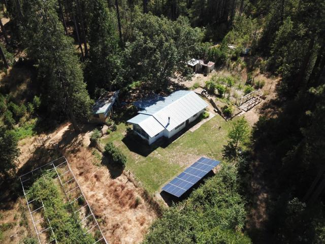 6305 Lake Hill Rd, Coulterville, CA 95311 (MLS #18071042) :: REMAX Executive