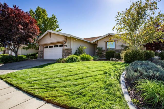 1203 Freschi Lane, Lincoln, CA 95648 (MLS #18071091) :: Heidi Phong Real Estate Team