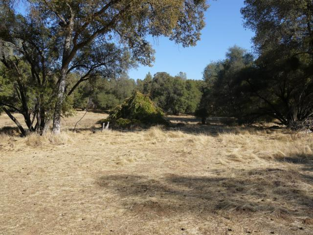 0 Hwy 49 Parcel 14, Sonora, CA 95370 (MLS #18071134) :: Dominic Brandon and Team