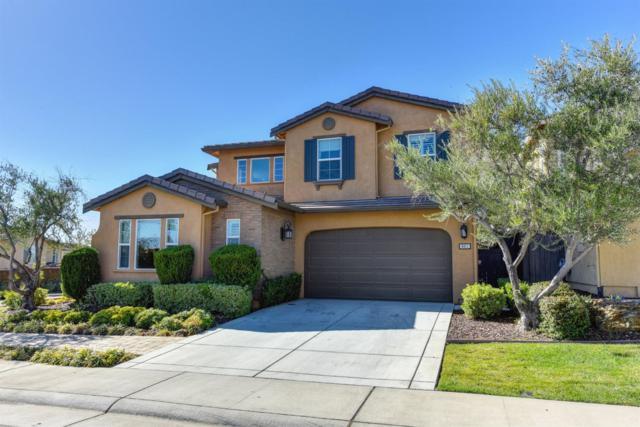 801 Calico Drive, Rocklin, CA 95765 (MLS #18071356) :: Heidi Phong Real Estate Team
