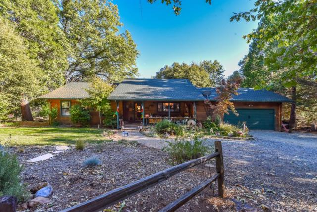 14346 Williams Road, Pioneer, CA 95666 (MLS #18071394) :: Dominic Brandon and Team