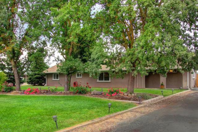 11194 Alta Mesa Road, Wilton, CA 95693 (MLS #18071416) :: The Merlino Home Team