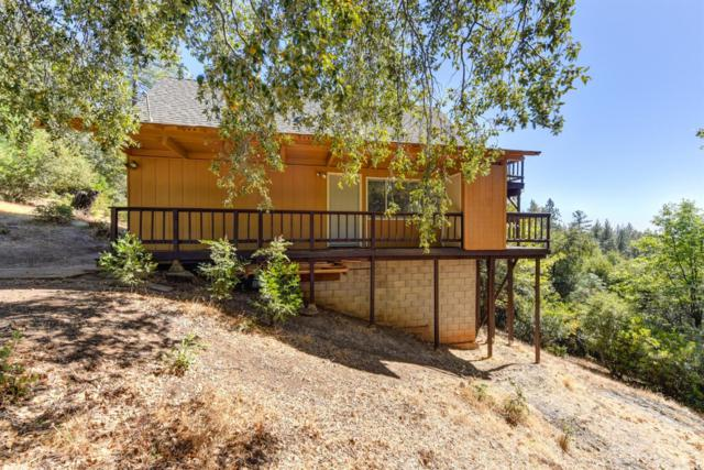 12804 Bonnefoy Road, Pine Grove, CA 95665 (MLS #18071677) :: Dominic Brandon and Team