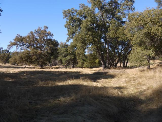 34 Old Wards Ferry Rd Road, Sonora, CA 95370 (MLS #18071713) :: Dominic Brandon and Team
