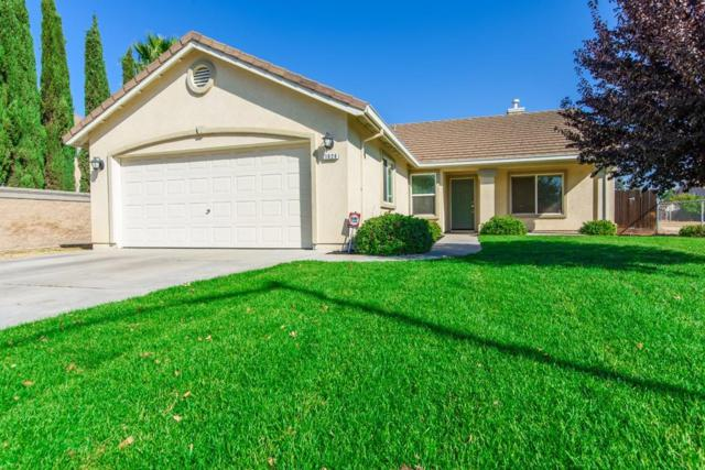 1026 Fishback Road, Manteca, CA 95337 (MLS #18071801) :: Heidi Phong Real Estate Team