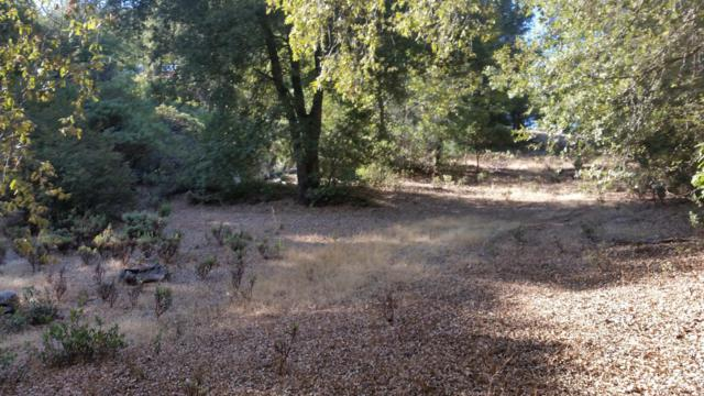 2 Toyon Rd, Pine Grove, CA 95665 (MLS #18071912) :: The Merlino Home Team