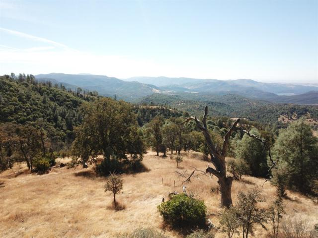 0 Jackass Ridge Rd., Coulterville, CA 95311 (MLS #18071922) :: REMAX Executive