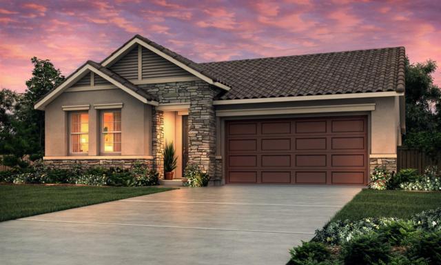 1677 Dodder Drive, Los Banos, CA 93635 (MLS #18071994) :: Heidi Phong Real Estate Team