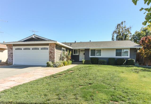 5342 Rucker Drive, San Jose, CA 95124 (MLS #18072283) :: The Del Real Group