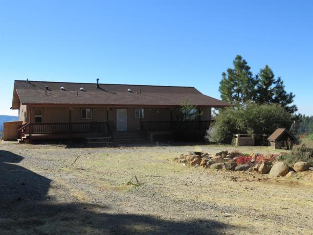 900 Old Road, West Point, CA 95255 (MLS #18072368) :: REMAX Executive