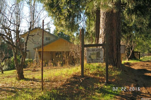 2058 Cable Road, Camino, CA 95709 (MLS #18072467) :: The Del Real Group