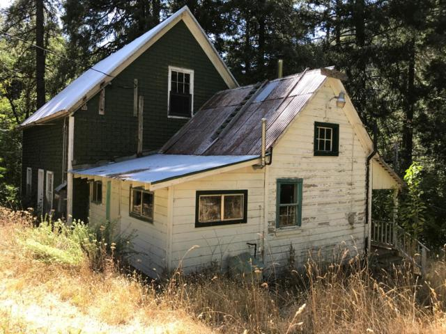 924 Old Tollbridge Road, Downieville, CA 95944 (MLS #18072565) :: Dominic Brandon and Team