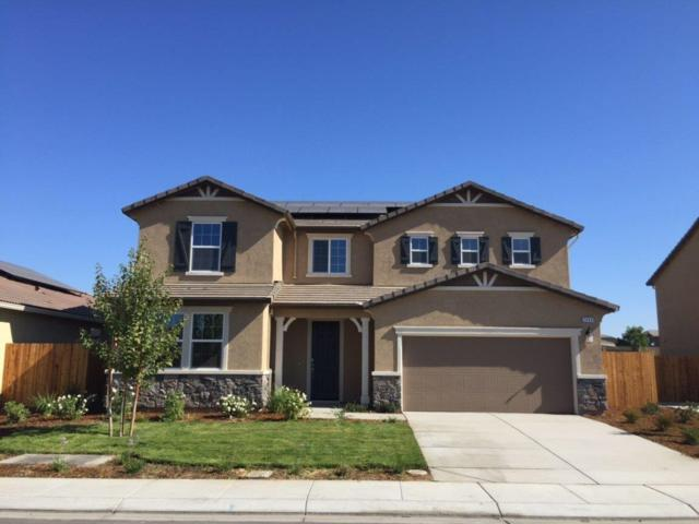 2454 Cardente Way, Manteca, CA 95337 (MLS #18072627) :: The Merlino Home Team