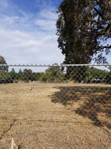 9163 Connie Avenue, Stockton, CA 95209 (MLS #18072768) :: Dominic Brandon and Team