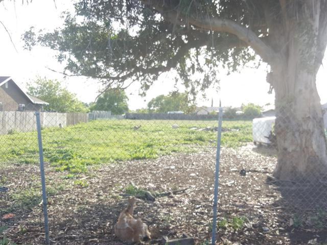 3821 Odell Avenue, Stockton, CA 95206 (MLS #18072806) :: The Merlino Home Team