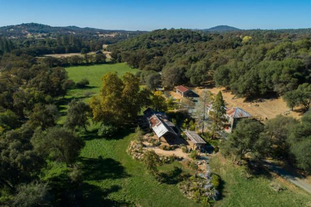 12499 Elster Place, Grass Valley, CA 95949 (MLS #18073019) :: Dominic Brandon and Team