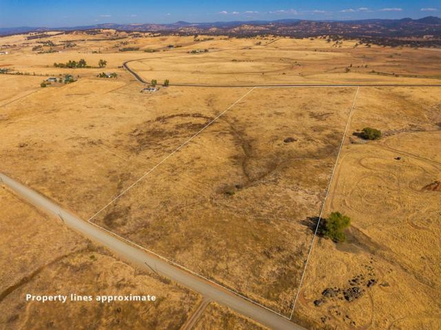 3513 Hokan Lane, Wheatland, CA 95692 (MLS #18073174) :: Dominic Brandon and Team