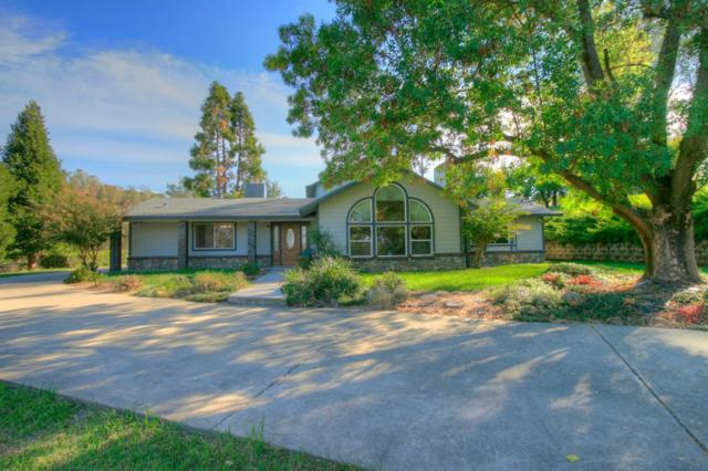 5910 Butler Road, Penryn, CA 95663 (MLS #18073452) :: Dominic Brandon and Team