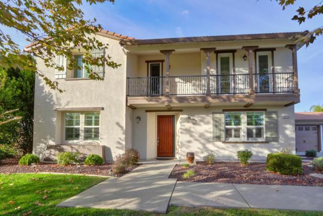 9715 Canopy Tree Street, Roseville, CA 95747 (MLS #18074152) :: Keller Williams Realty - Joanie Cowan