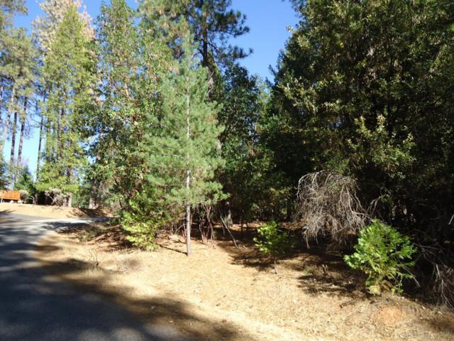 25214 Sugar Pine Drive, Pioneer, CA 95666 (MLS #18074229) :: Keller Williams Realty - Joanie Cowan