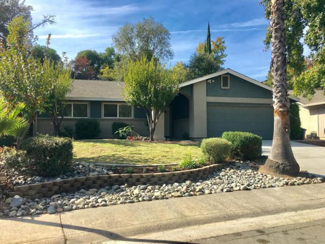8412 Cortadera Drive, Orangevale, CA 95662 (MLS #18074347) :: Keller Williams Realty - Joanie Cowan