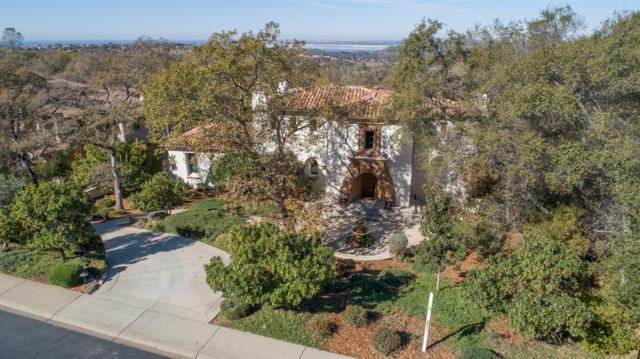 3796 Greenview Drive, El Dorado Hills, CA 95762 (MLS #18074544) :: Dominic Brandon and Team