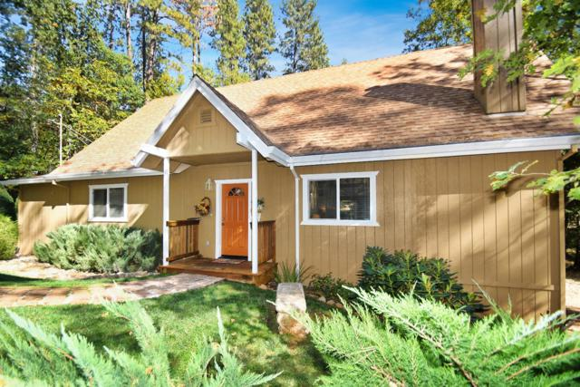 14520 Pine Grove Volcano Road, Pine Grove, CA 95665 (MLS #18074602) :: Dominic Brandon and Team