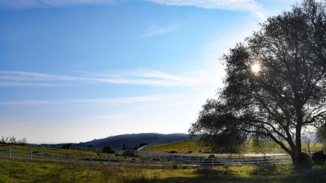 9905 Green Hill- Lot #1 Court, Newcastle, CA 95658 (MLS #18074936) :: Dominic Brandon and Team