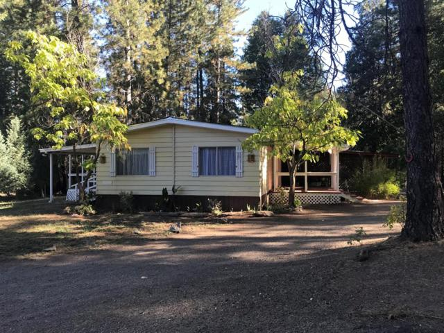10230 Holtzel Road, Coulterville, CA 95311 (MLS #18075013) :: The MacDonald Group at PMZ Real Estate