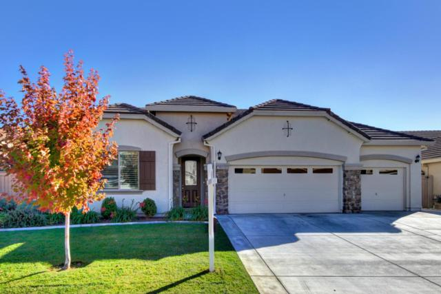 7808 Cordially Way, Elk Grove, CA 95757 (#18075384) :: Windermere Hulsey & Associates