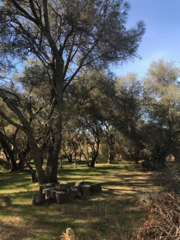 0 Wildwood, Granite Bay, CA 95746 (MLS #18075454) :: Keller Williams - Rachel Adams Group