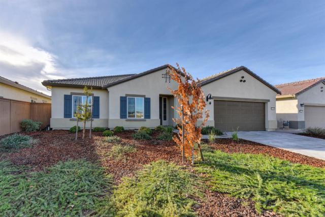 10054 Knotts Drive, Elk Grove, CA 95757 (#18075615) :: Windermere Hulsey & Associates
