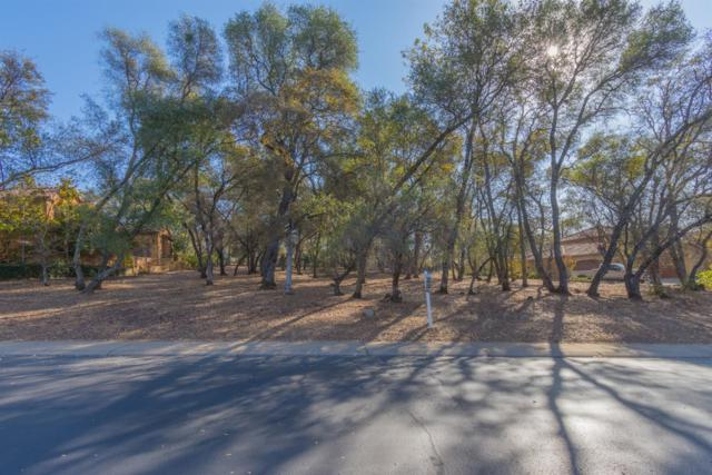 3835 Greenview Drive, El Dorado Hills, CA 95762 (MLS #18076249) :: Dominic Brandon and Team