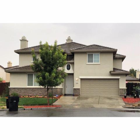 207 Sorrel Court, Patterson, CA 95363 (MLS #18076314) :: Keller Williams Realty - Joanie Cowan