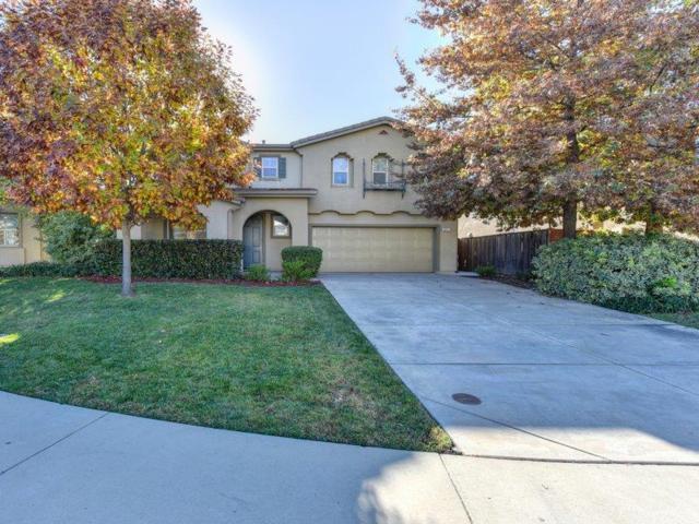 311 Dorinda Court, Lincoln, CA 95648 (MLS #18076389) :: Keller Williams Realty Folsom