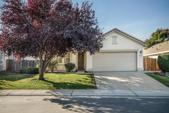 2220 Purple Marlin Court, Rocklin, CA 95765 (MLS #18076633) :: Keller Williams Realty - Joanie Cowan