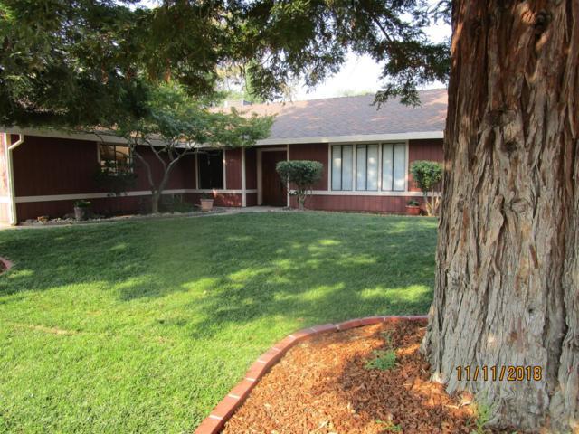 6951 Pampas Way, Fair Oaks, CA 95628 (MLS #18076768) :: Dominic Brandon and Team