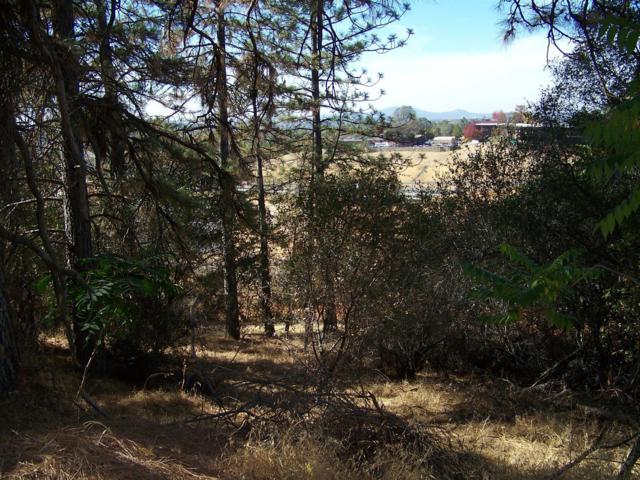 3070 Golden Nugget Way, Placerville, CA 95667 (MLS #18077063) :: Keller Williams Realty - Joanie Cowan