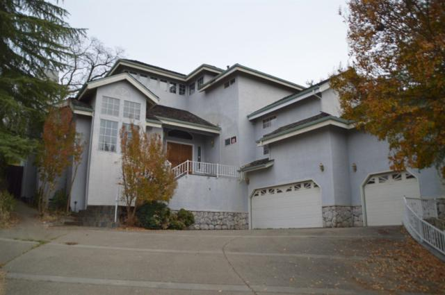 338 Canyon Falls Drive, Folsom, CA 95630 (MLS #18077159) :: Keller Williams Realty Folsom