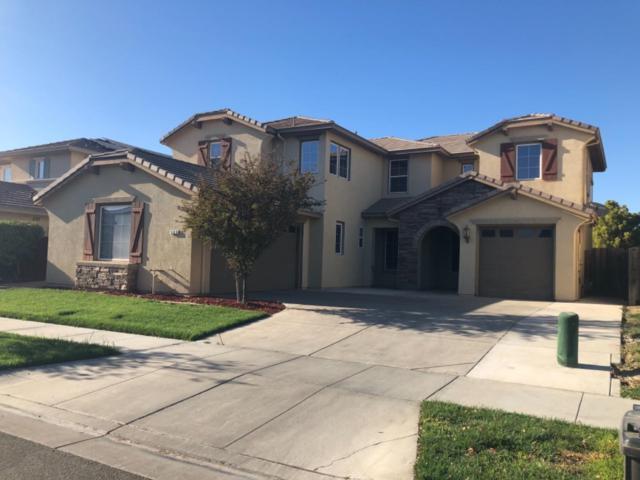 505 New Well Avenue, Lathrop, CA 95330 (MLS #18077369) :: Keller Williams Realty - Joanie Cowan