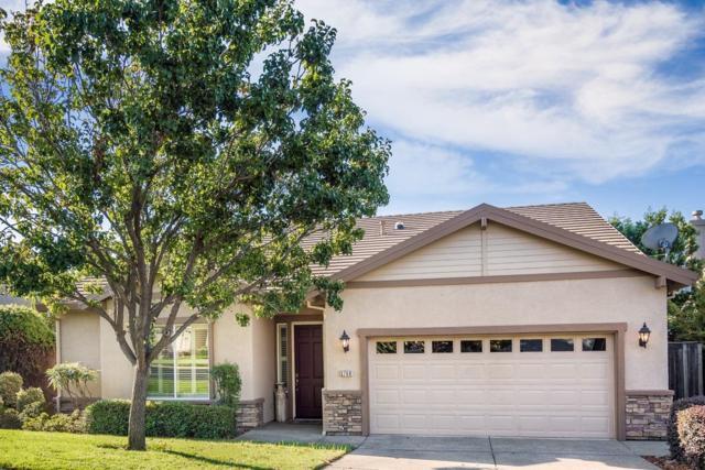 3768 Coldwater Drive, Rocklin, CA 95765 (MLS #18077495) :: Keller Williams Realty - Joanie Cowan