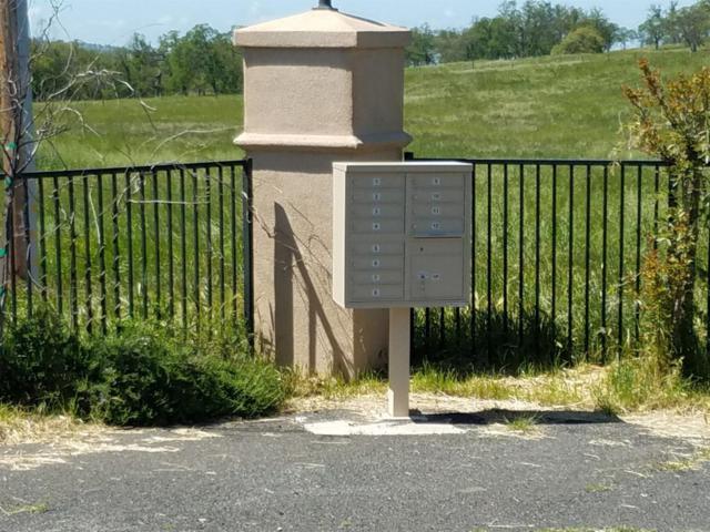 0 Granite Springs, Coulterville, CA 95311 (MLS #18078064) :: Keller Williams Realty Folsom