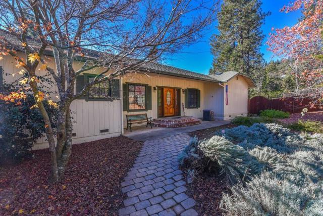 16305 Suncatcher Lane, Pioneer, CA 95666 (MLS #18078239) :: REMAX Executive