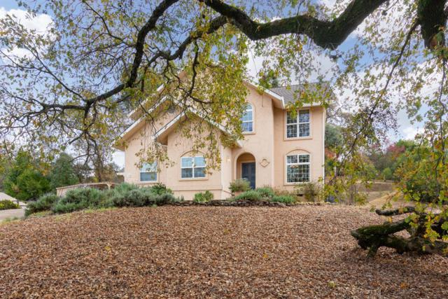 334 N View Court, Sutter Creek, CA 95685 (MLS #18078791) :: The MacDonald Group at PMZ Real Estate